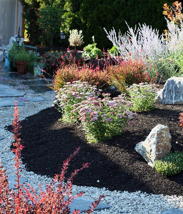 Xeriscape design in a garden by Waterwise Design in Kelowna