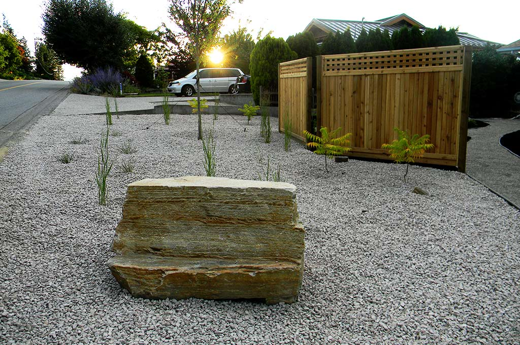 First year of xeriscape planting by Waterwise Landscape Design in Kelowna