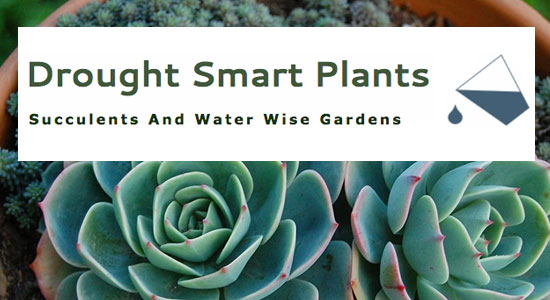 Link to Drought Smart Plants website by Waterwise Landscape Design in Kelowna
